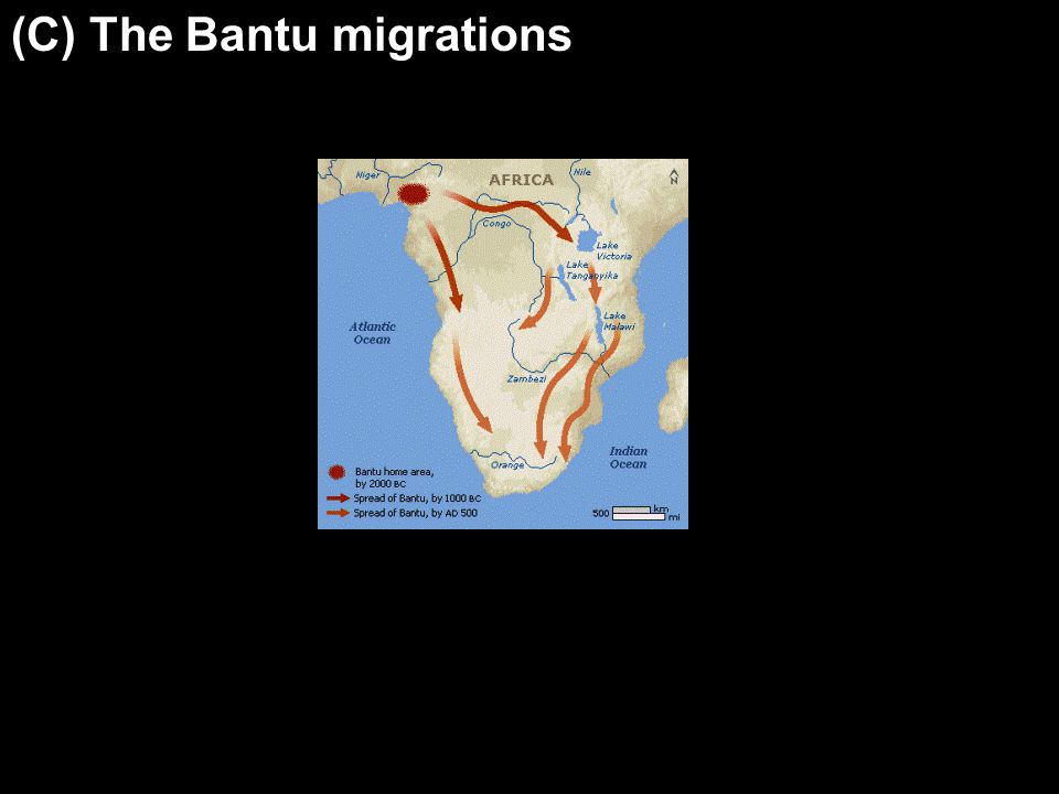 (C) The Bantu migrations