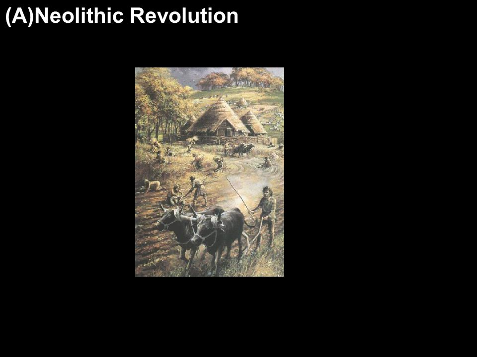 (A)Neolithic Revolution