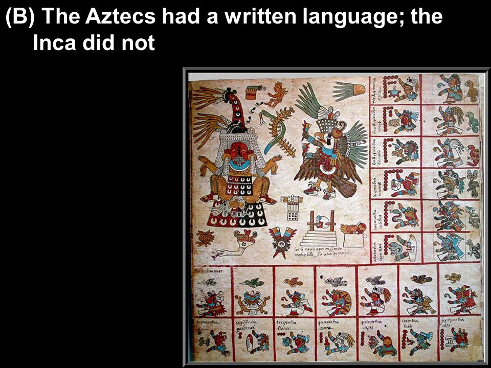 (B) The Aztecs had a written language; the Inca did not