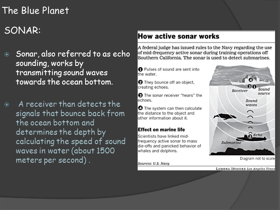 The Blue Planet SONAR: Sonar, also referred to as echo sounding, works by transmitting sound waves towards the ocean bottom.