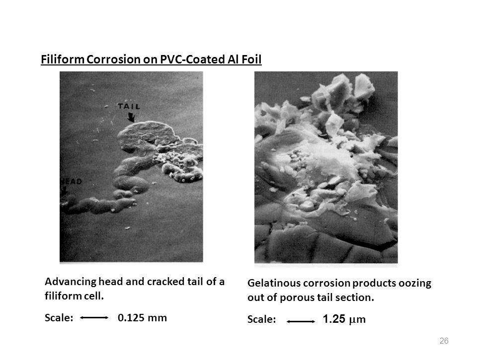 Filiform Corrosion on PVC-Coated Al Foil