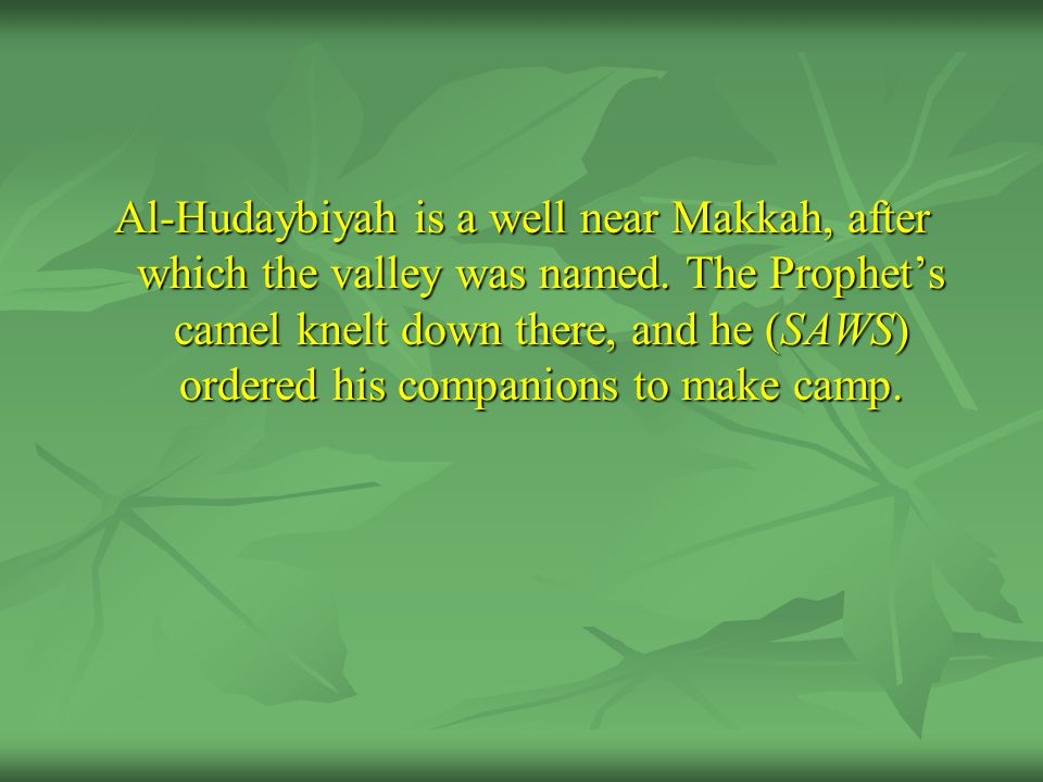 Al-Hudaybiyah is a well near Makkah, after which the valley was named