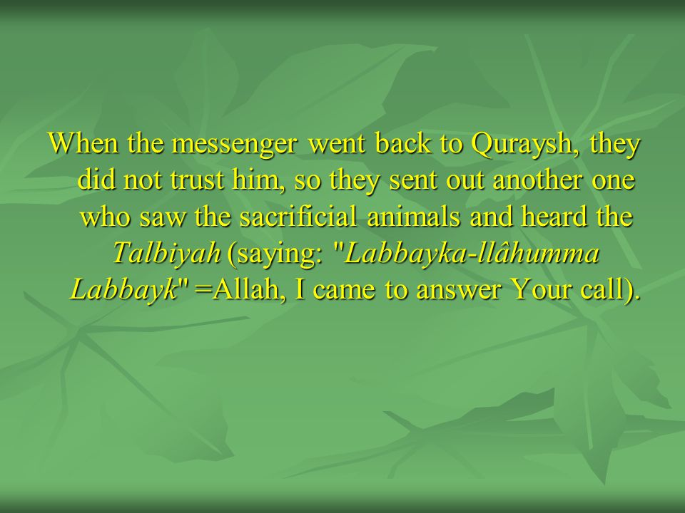 When the messenger went back to Quraysh, they did not trust him, so they sent out another one who saw the sacrificial animals and heard the Talbiyah (saying: Labbayka-llâhumma Labbayk =Allah, I came to answer Your call).