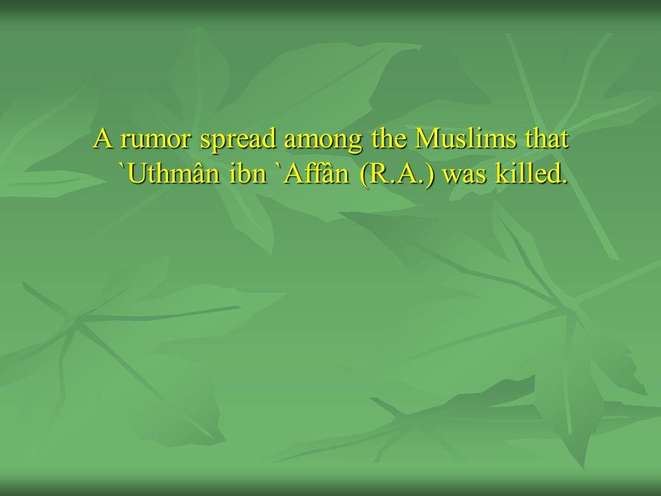 A rumor spread among the Muslims that `Uthmân ibn `Affân (R. A
