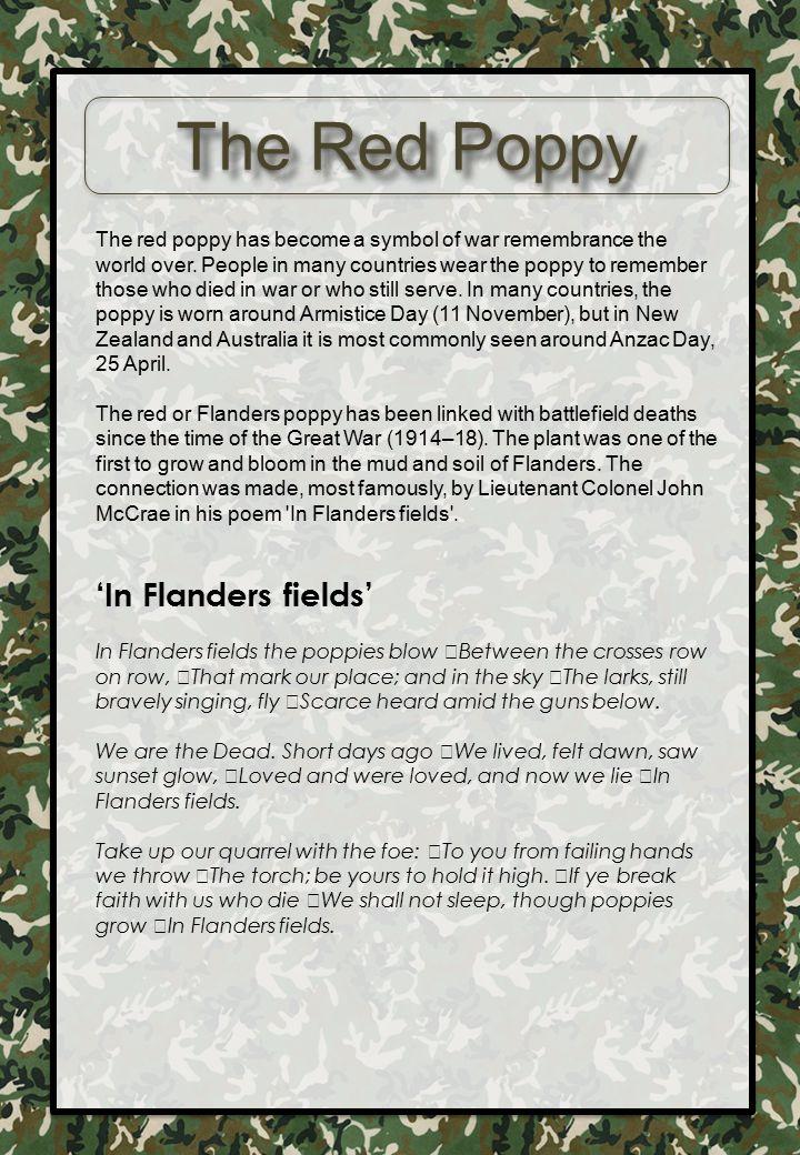 The Red Poppy 'In Flanders fields'