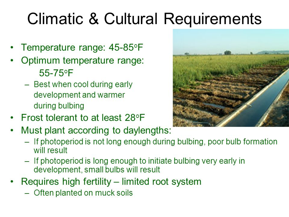 Climatic & Cultural Requirements