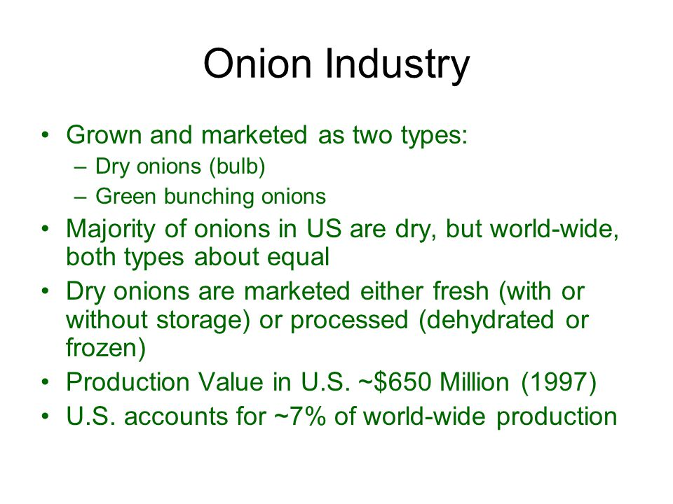 Onion Industry Grown and marketed as two types: