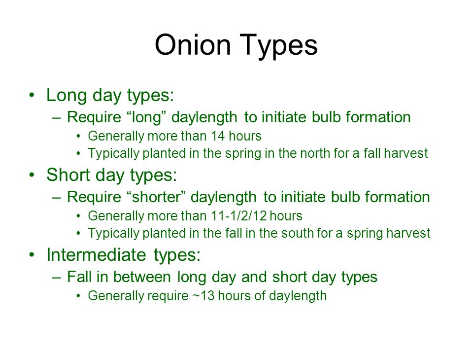 Onion Types Long day types: Short day types: Intermediate types: