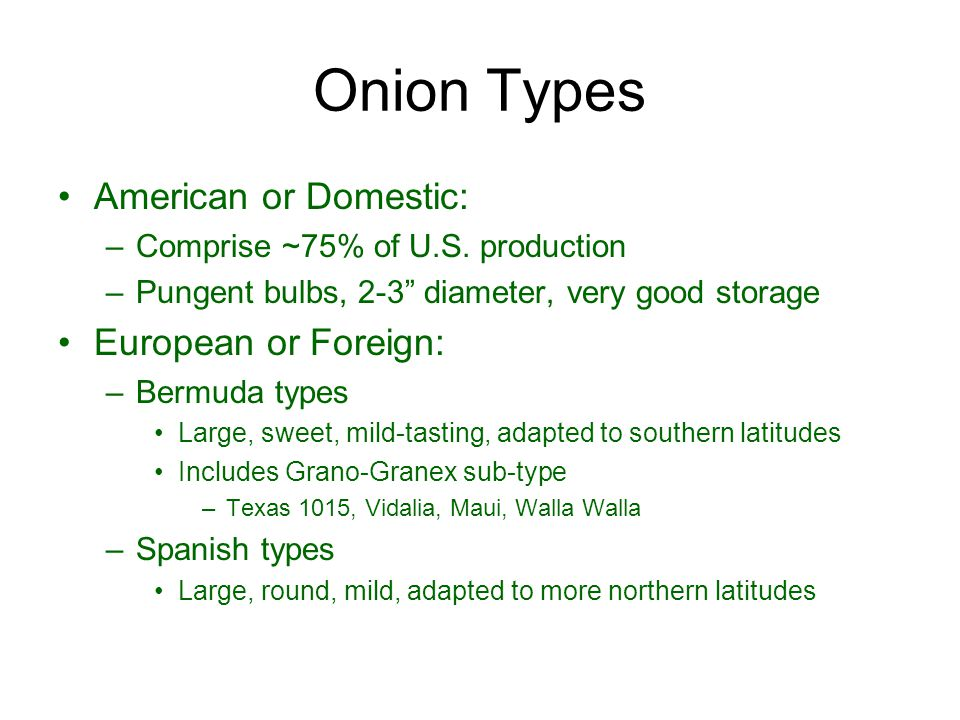 Onion Types American or Domestic: European or Foreign: