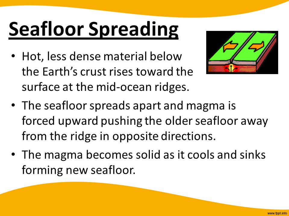 Seafloor Spreading Hot, less dense material below the Earth's crust rises toward the surface at the mid-ocean ridges.
