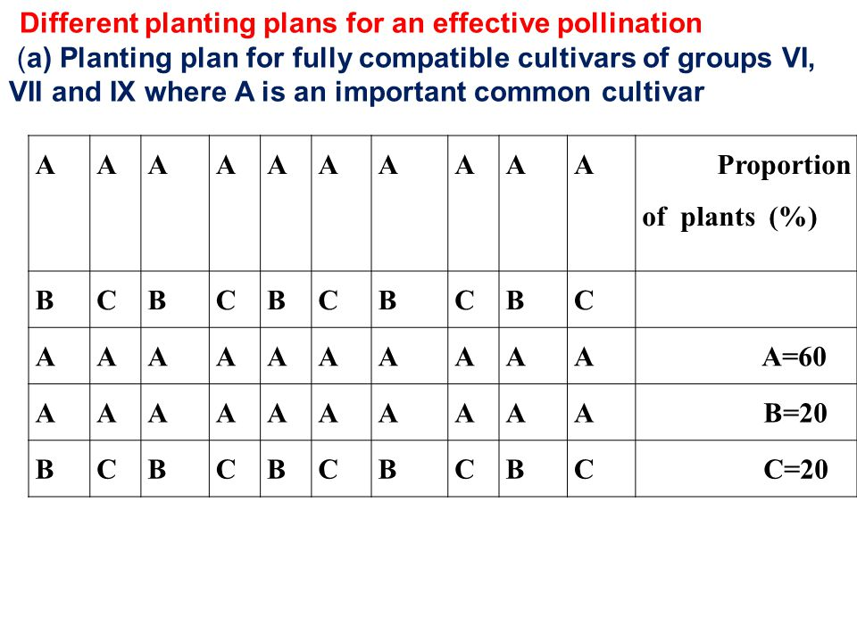 (a) Planting plan for fully compatible cultivars of groups VI,