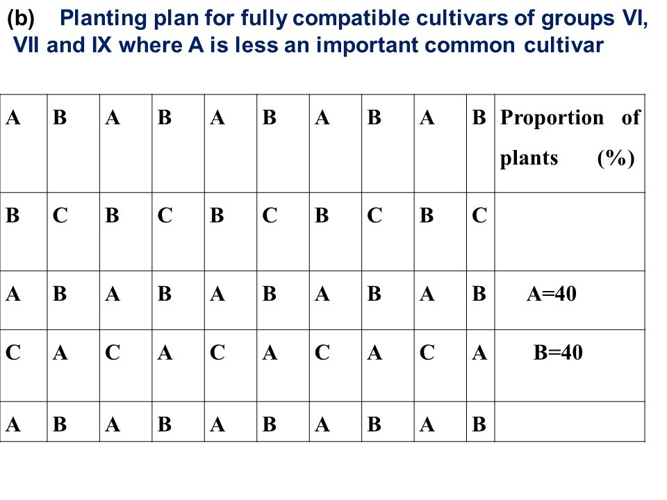 (b) Planting plan for fully compatible cultivars of groups VI,