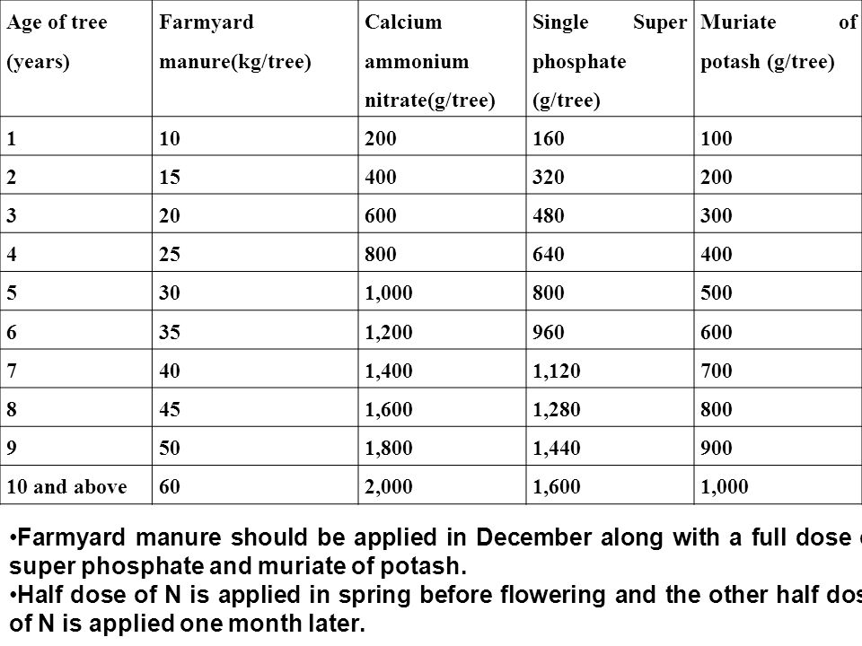 Age of tree (years) Farmyard manure(kg/tree) Calcium ammonium nitrate(g/tree) Single Super phosphate (g/tree)