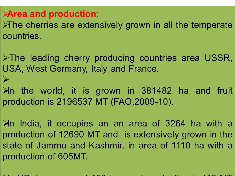 Area and production: The cherries are extensively grown in all the temperate countries.