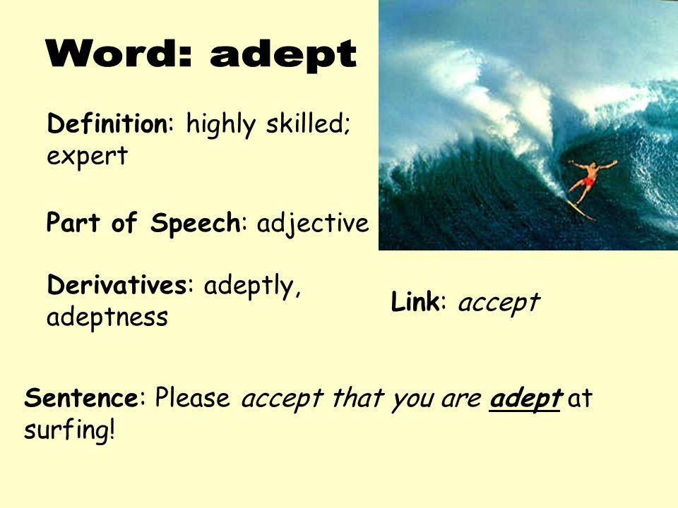 Word: adept Definition: highly skilled; expert