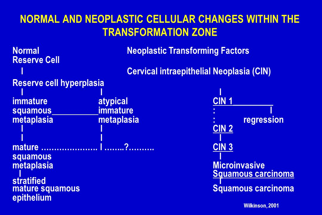 NORMAL AND NEOPLASTIC CELLULAR CHANGES WITHIN THE TRANSFORMATION ZONE