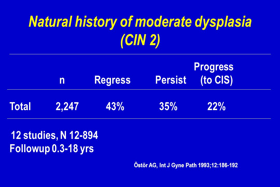 Natural history of moderate dysplasia (CIN 2)
