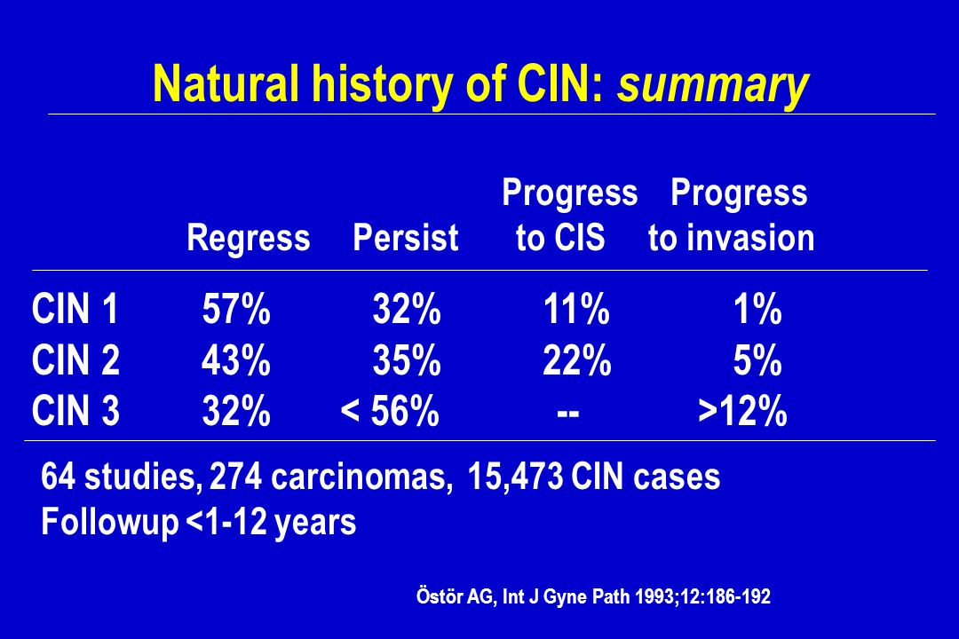 Natural history of CIN: summary
