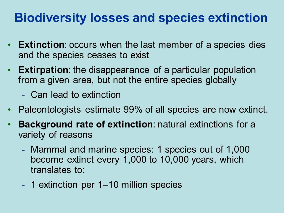 Biodiversity losses and species extinction