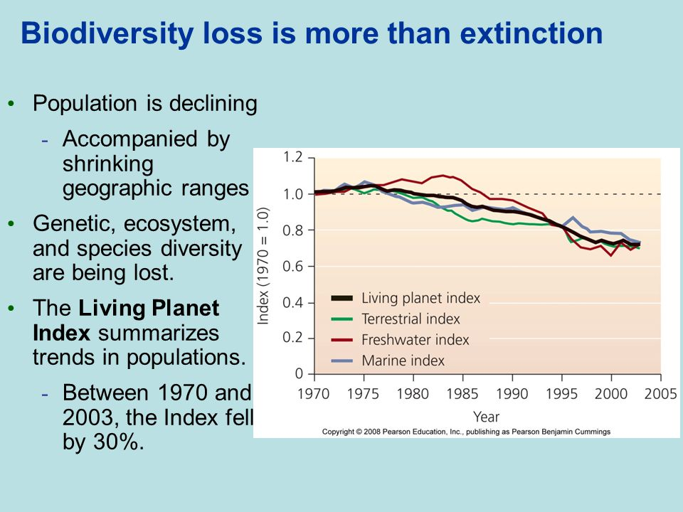 Biodiversity loss is more than extinction