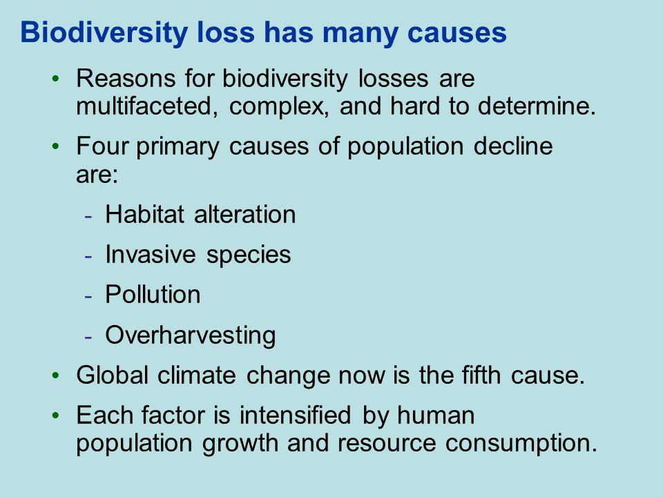 Biodiversity loss has many causes