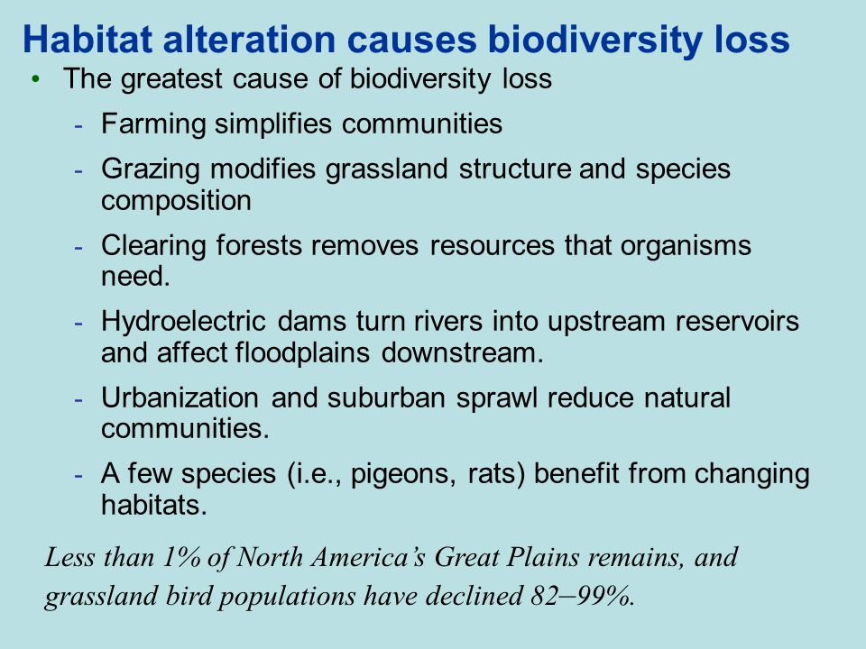 causes and consequences of reduced biodiversity essay Underlying causes of species endangerment is clearly warranted scholars have  contributed  as a consequence, fish biodiversity loss not only affects coastal  ecosystems  natural causes: essays in ecological marxism the guilford  press.