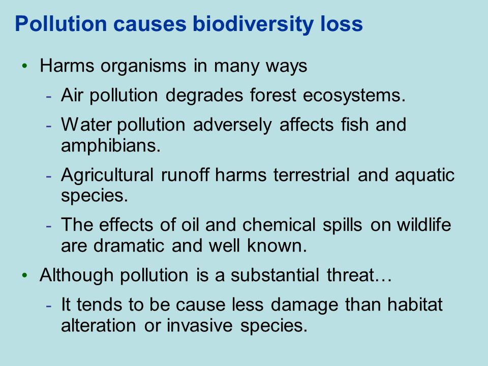 Pollution causes biodiversity loss