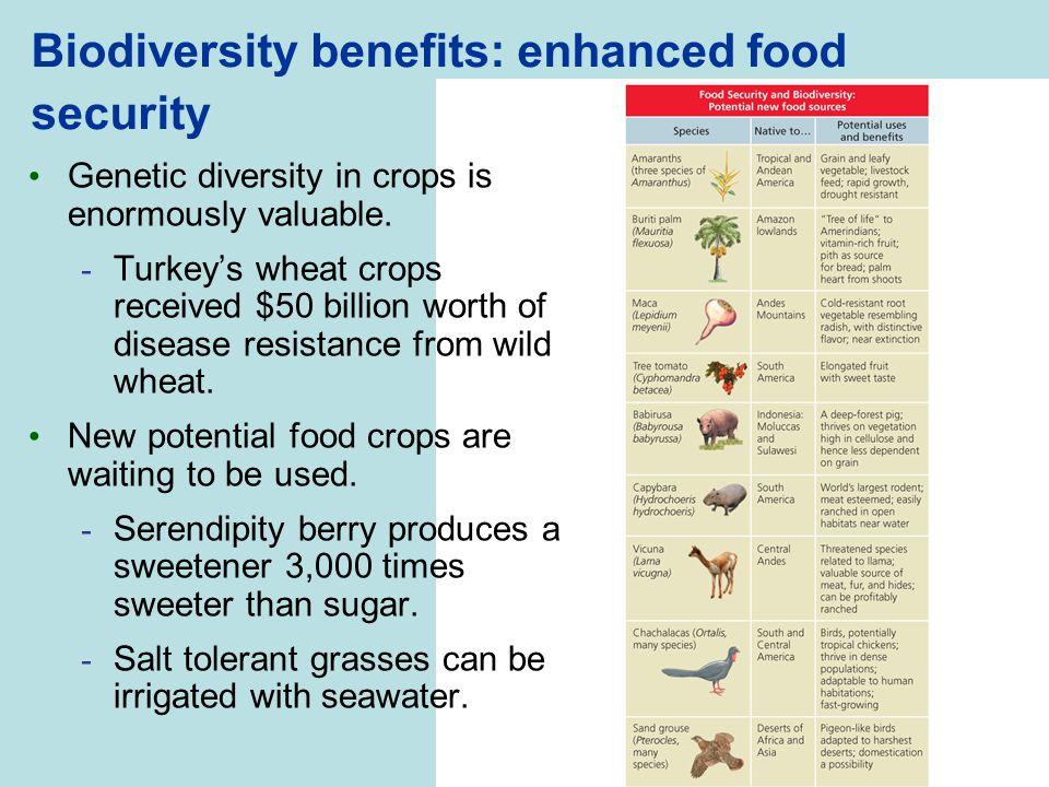 Biodiversity benefits: enhanced food security