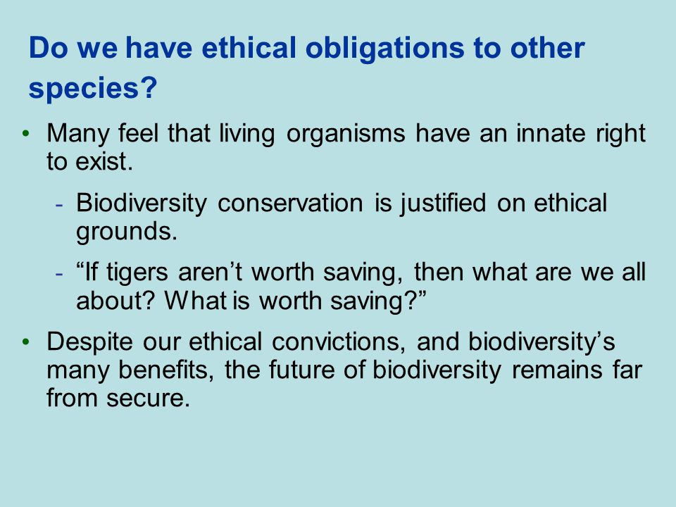 Do we have ethical obligations to other species