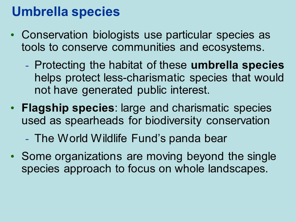 Umbrella species Conservation biologists use particular species as tools to conserve communities and ecosystems.