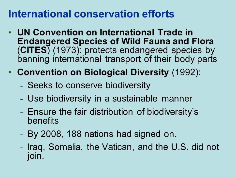 International conservation efforts