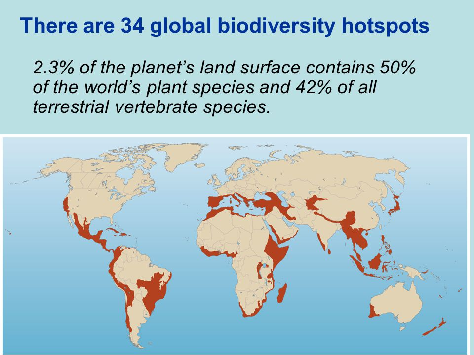 There are 34 global biodiversity hotspots