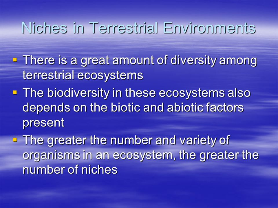 Niches in Terrestrial Environments