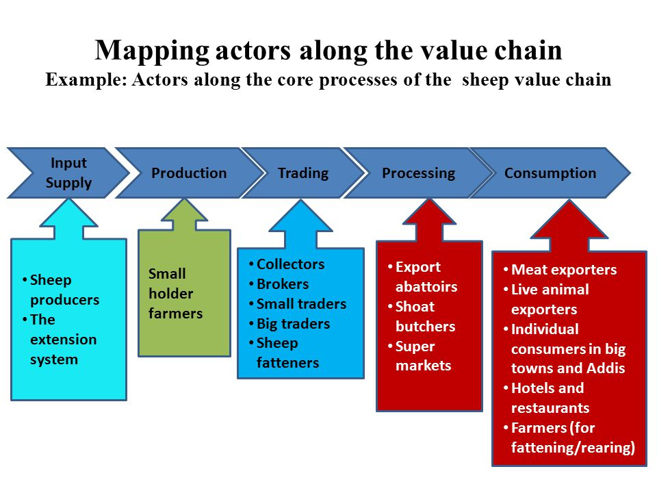 Mapping actors along the value chain Example: Actors along the core processes of the sheep value chain