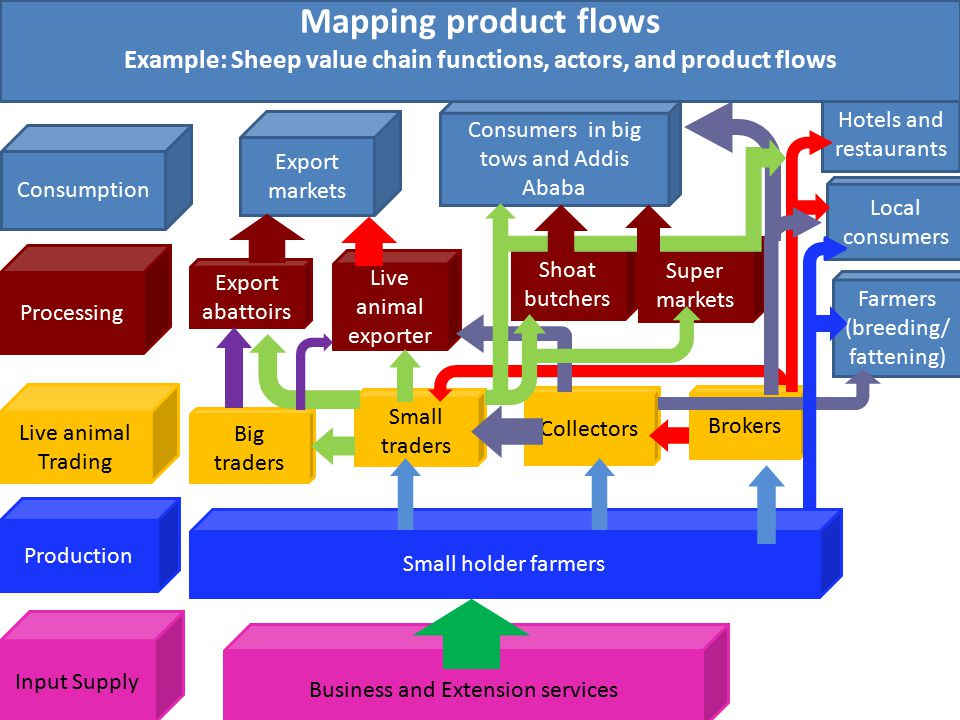 Example: Sheep value chain functions, actors, and product flows
