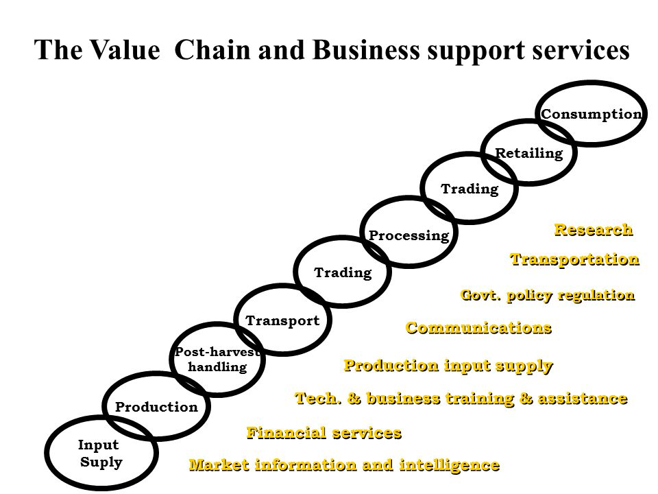 The Value Chain and Business support services