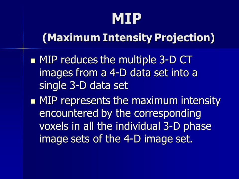 MIP (Maximum Intensity Projection)