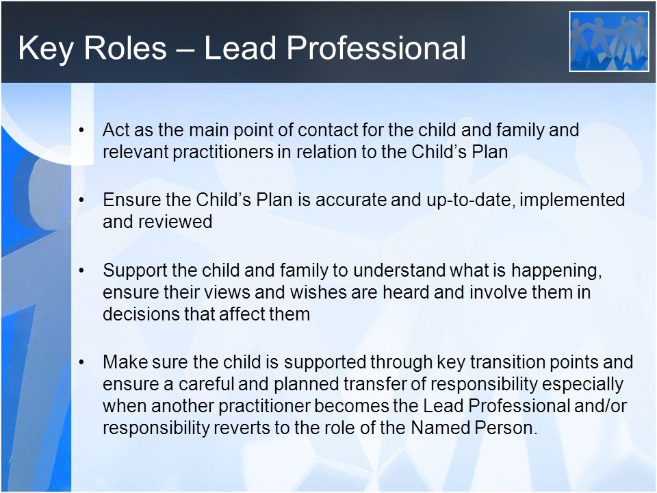 Key Roles – Lead Professional