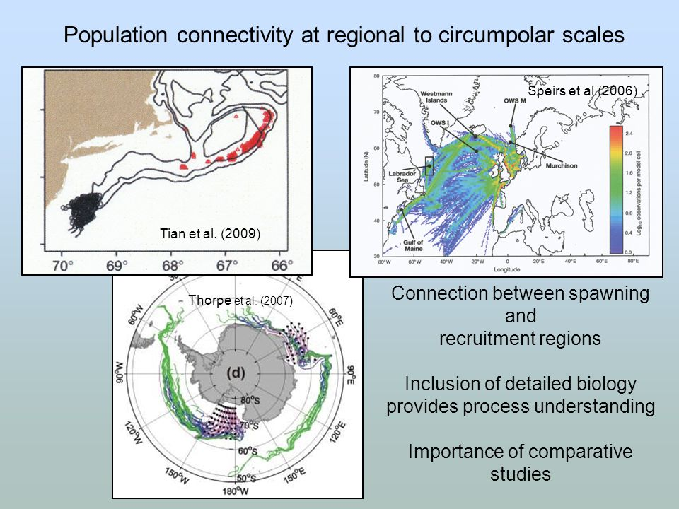Population connectivity at regional to circumpolar scales