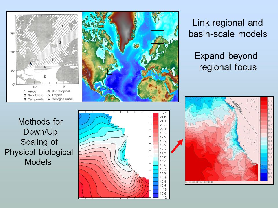 Link regional and basin-scale models Expand beyond regional focus