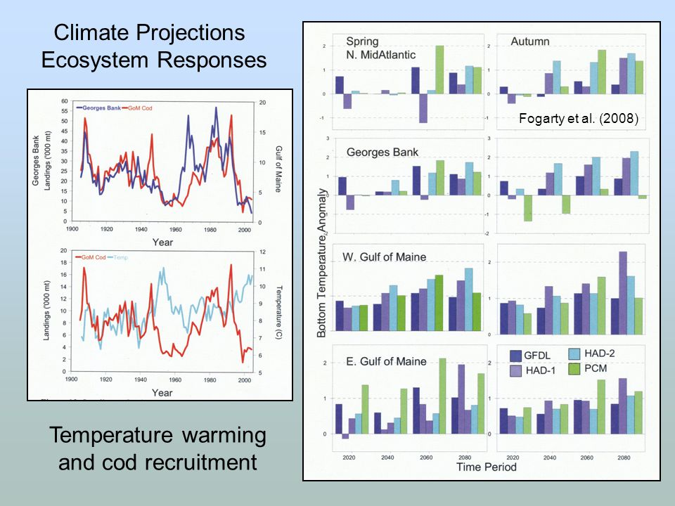 Temperature warming and cod recruitment