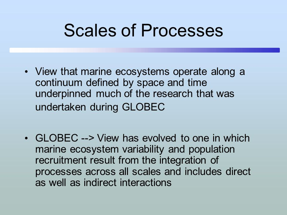Scales of Processes
