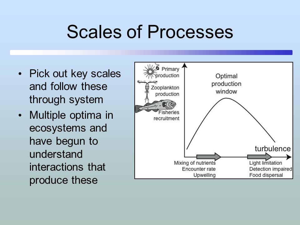Scales of Processes Pick out key scales and follow these through system.