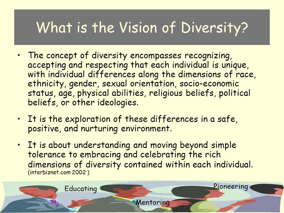 What is the Vision of Diversity