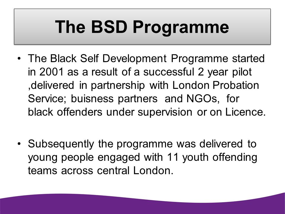 The BSD Programme