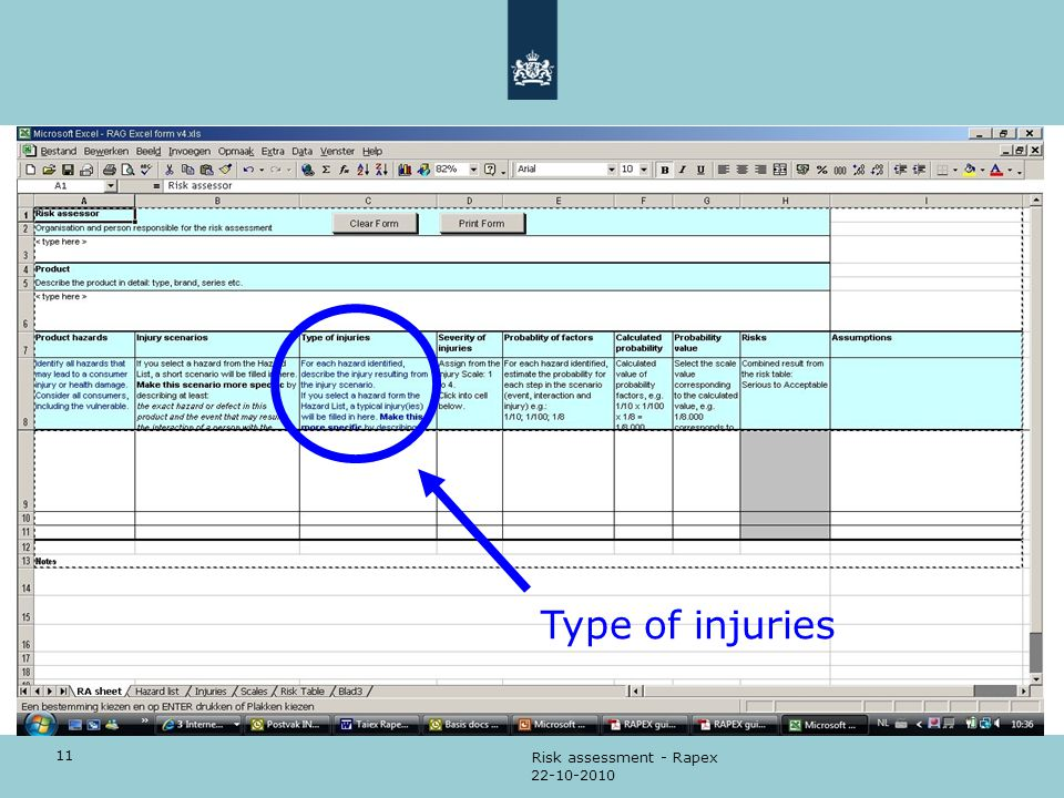 Type of injuries Risk assessment - Rapex 22-10-2010