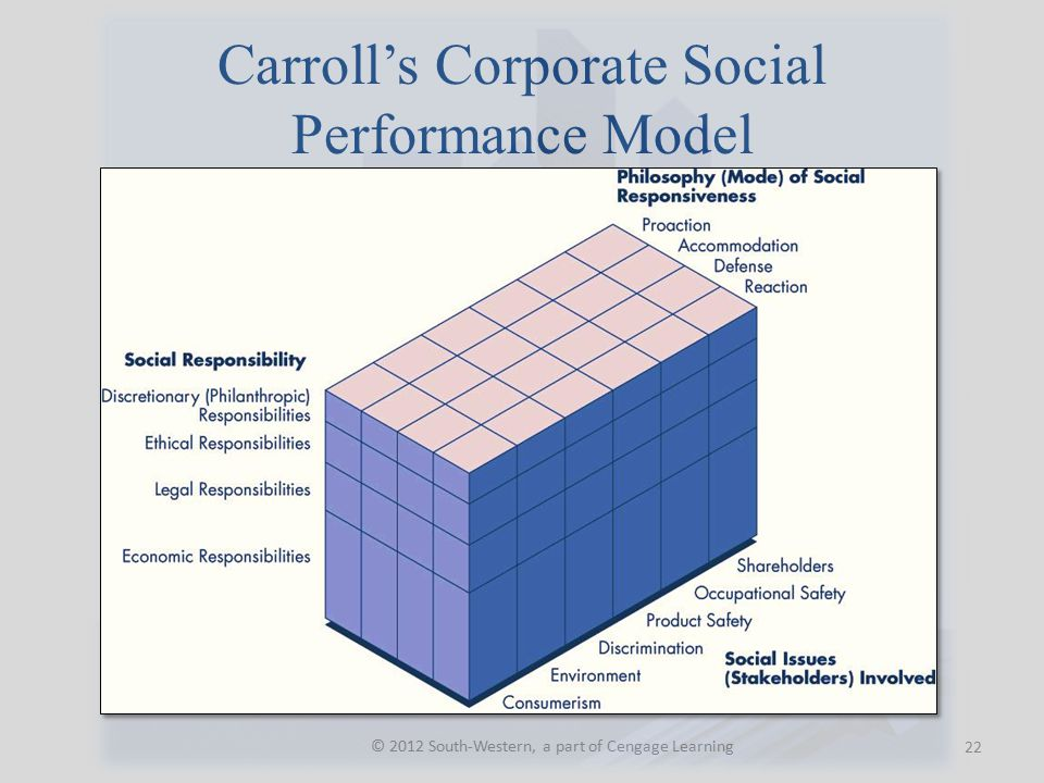 Carroll's Corporate Social Performance Model