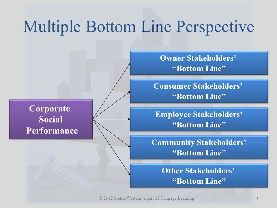 Multiple Bottom Line Perspective