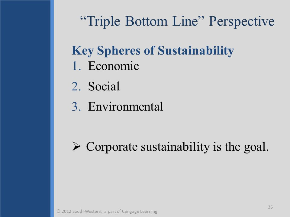 Triple Bottom Line Perspective