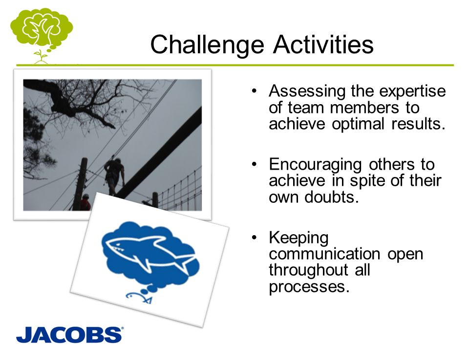 Challenge Activities Assessing the expertise of team members to achieve optimal results. Encouraging others to achieve in spite of their own doubts.
